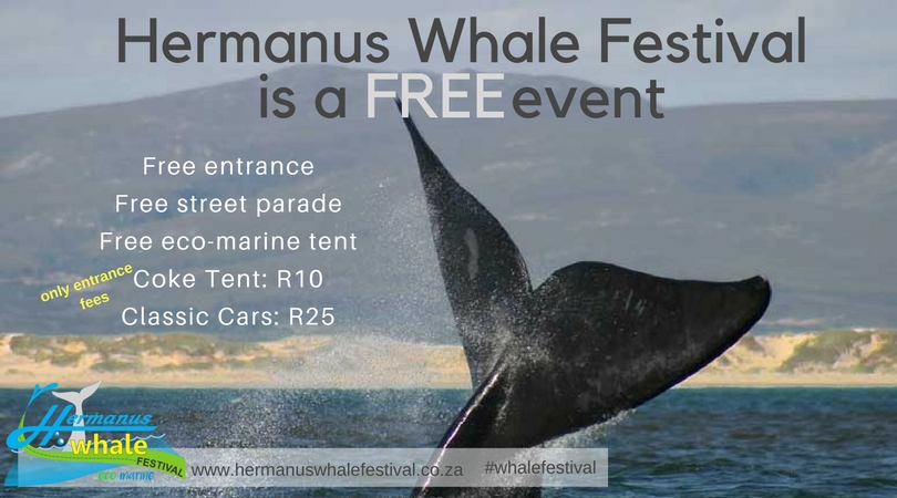 whale festival FREE